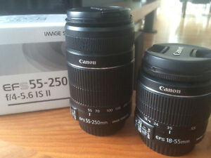 Objectif Canon EFS 55-250mm