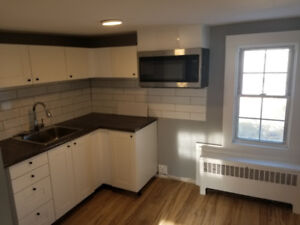 Beautifully Renovated, Small One Bedroom Apartment