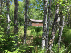 NEW PRICE - Cottage with 350 Acres