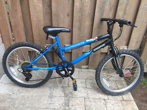 "Bikes for Boys / Girls ( Tires 20"" )"