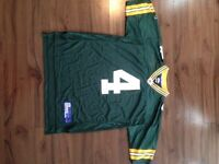Farve Green Bay packers and Brodeur New Jersey devils