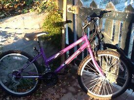 Purple Universal Wildthing Teen Girls Bike