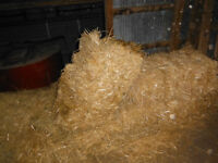 staw , small square bales