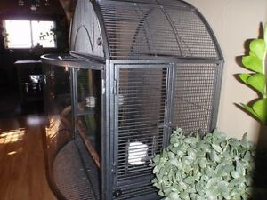 Rare Plexiglass Bowfront Parrot Cage - Price Reduced