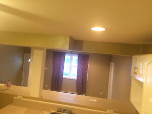 Affordable large clean apartment downtown