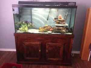 90 gallon aquarium with wooden stand