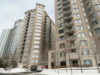 Modern 2 bed, 2 bath condo in a quiet building downtown
