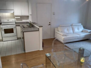 Plateau, Fully Furnished Apartment / Toute Inclus 2 chambres