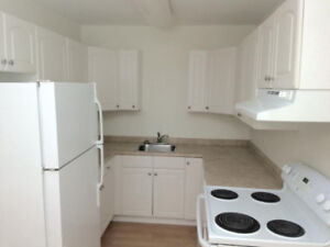 Beautiful Suite Available in St. B -- 1/2 month rent free!