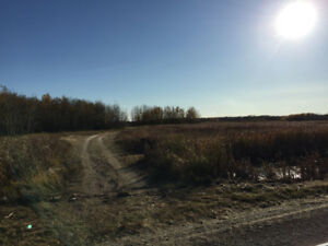 80 acres with power and road-RM of Good Lake