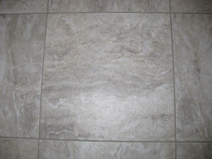 Light Grey Tiles (153 square feet) Prince George British Columbia image 1