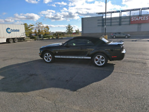 Ford Mustang 4.0L convertible - raxiom - leather
