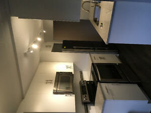 **BEAUTIFUL LARGE FULLY RENOVATED 2 BEDROOM CONDO UNIT**