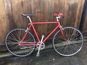 single speed bicycle, commuter, one of a kind