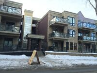 MOVE-IN READY Beautiful 2 bedroom condo at 10811 72 ave NW