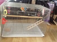Great condition bird cage and accessories