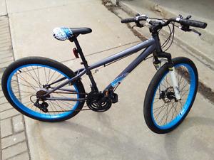 Schwinn 21 Speed Adult Mountain Bike