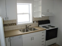 Renovated 2 Bedroom Apartment Downtown