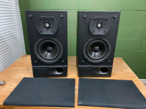 MIRAGE M290 TWO WAY SPEAKER