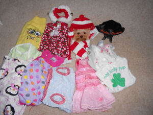 Assorted Small Dog Sweaters, Costumes,etc.