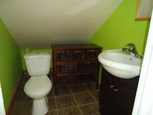 Maison à vendre 4, Lac Barnabé, Hébertville Lac-Saint-Jean Saguenay-Lac-Saint-Jean image 10
