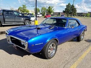 1967 Firebird 400 6 Speed For Sale