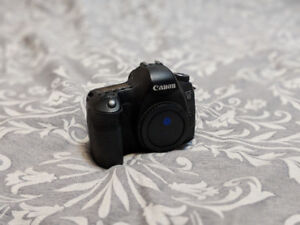 Used Canon 6D for sale!