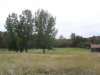 81 ACRES OF UNSPOILED LAND