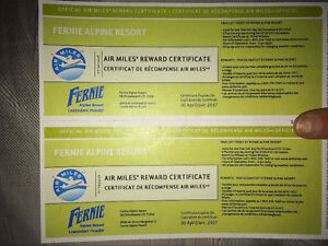 2ligt tickets for Fernie Alpine Resort