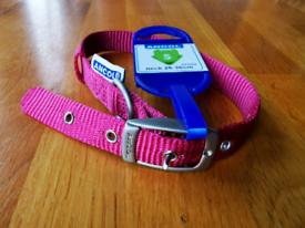 FREE. Ancol dog collar 26-36 cm