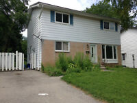Excellent value newly renovated detached with finished basement