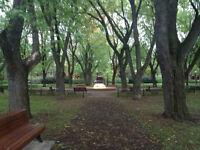 PLATEAU devant parc Baldwin