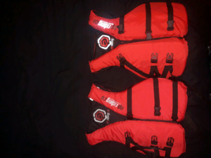 Lifejackets used a few times last summer