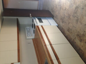 1 bedroom basement suite available immediately