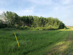 Gorgeous property  6 acres of room to build your own paradise!
