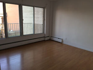 Aug. Lease Transfer - Sunny 1-bedroom Apartment in McGill Ghetto