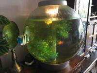 60 litre Biorb Fish Tank