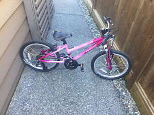 2013 Norco Jem with new upgraded parts