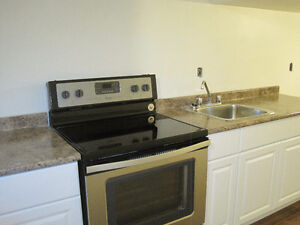 Brand New Basement Apartment with all New Appliances