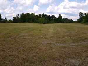 40 Acres on County Road 6, 10 minutes to Cat Centre Kingston Kingston Area image 5