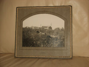 vintage 1920's Oil Painting & Photograph ENGLISH SETTERS