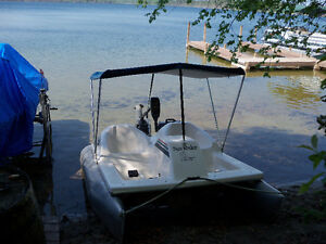 Pontoon Paddle Boat For Sale