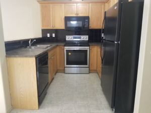 Beautiful 3 Bedrooms Townhouse with finished basement.