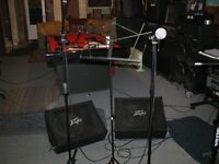 peavey monitors with 12 inch speakers