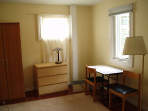 Nice and Clean Furnished Bedroom (downtown)