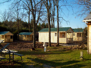 bunkie shed man cave cabin