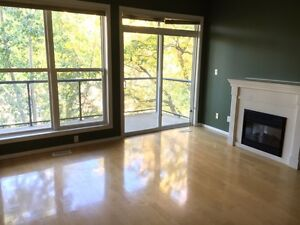 Beautiful, modern 2 BDR condo near UofA, Whyte, - Available now