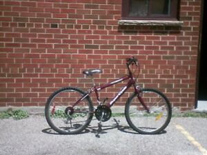 15 Speed Super Cycle Mountain Bike