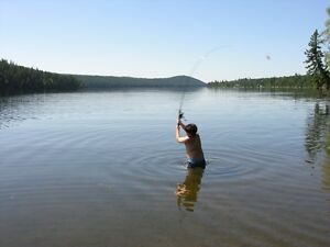 Exceptional location - Calm - 292' Waterfront - 213' Beach Williams Lake Cariboo Area image 5