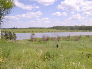 1.97 Acre Waterfront Lot on Pinawa Channel